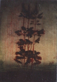 Michael Canning, The Odds II, oil on linen on wood, 21 x 15 cm, 2012