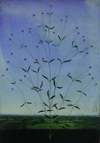 Michael Canning, Brumel, oil on gessoed wood panel, 70 x 50 cm, 2012, SOLD