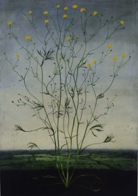 Michael Canning, Gould, oil on gessoed wood panel, 70 x 50 cm, 2012, SOLD