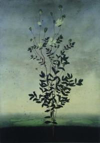 Michael Canning, Lustrum, oil on gessoed wood panel, 70 x 50 cm, 2012, SOLD