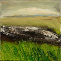 Mary Canty, Wetlands 2, oil on canvas, 20 x 20 cm, 2008 SOLD