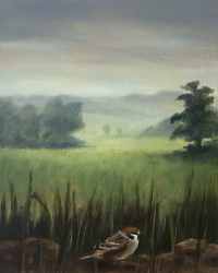 Gail Boyagian, Sparrow & the Meadow, oil on panel, 25.25 x 20.5 cm, 2013, €1,100