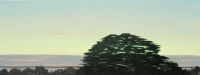 Tim Goulding, Evening Sky and Tree, 30 x 80 cm, acrylic on canvas, € 2,800