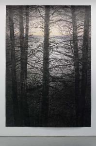 Michael Canning, Selva Oscura II, 305 x 213 cm, acrylic, charcoal, soot, ash, pencil on paper, 2014