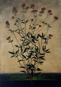 Michael Canning, Allemande, oil on gessoed wood panel, 70 x 50 cm, 2012, SOLD