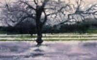 Bernadette Kiely, Flood - Tree, oil on canvas, 2007