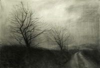 Maeve McCarthy, Bare Trees 2, charcoal on Fabriano paper, 70 x 100 cm, 2014, € 1,690