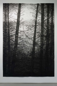 Michael Canning, Selva Oscura I, 305 x 213 cm, acrylic, charcoal, soot, ash, pencil on paper, 2014