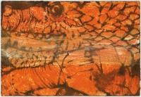 Hughie O'Donoghue, Lion and Snake I, 2011, monotype, 37 x 55 cm, € 2,900