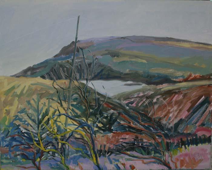 Anastasia O'Donoghue Healy, Winter Coastlands
