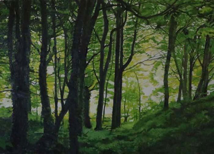 Paul Ringrose, Shaw's Woods